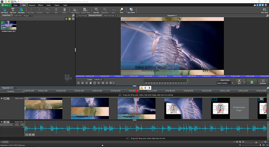 videopad video editor software for pc & mac